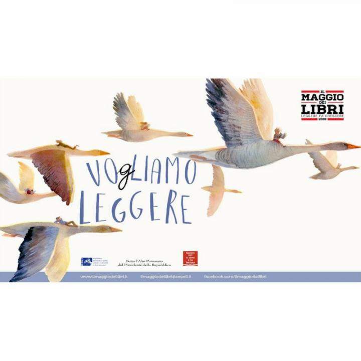 VOGLIAMO LEGGERE | GIOCA LIBRO