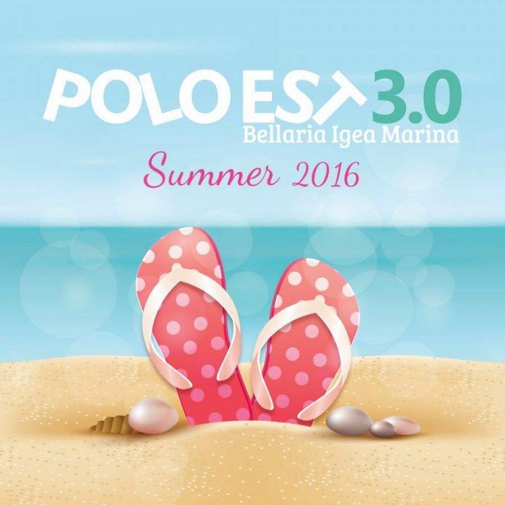 POLO EST 3.0 ESTATE 2016