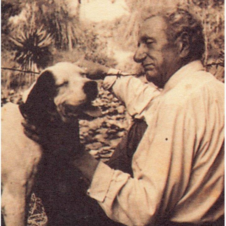 VITTORIO BELLI
